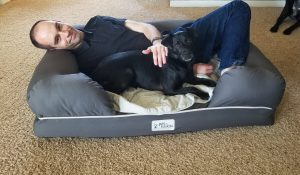 Mason and Lincoln sharing the petfusion ultimate dog bed in the living room